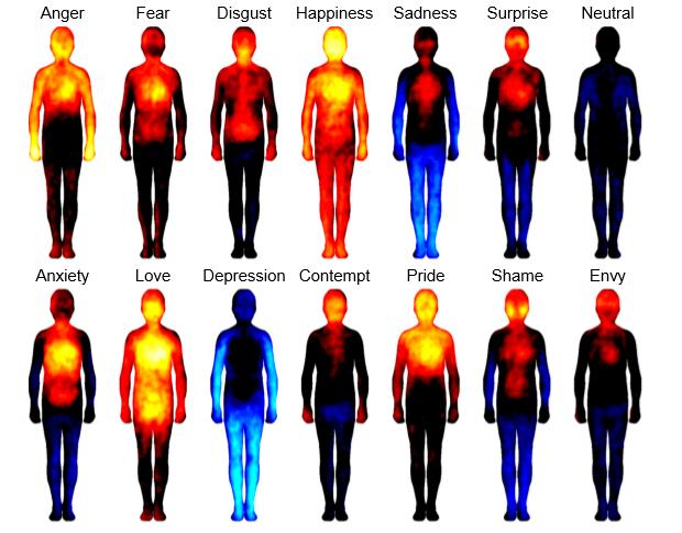 Onderzoek naar emoties uit 2013
