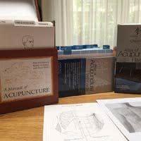 acupunctuur flashcards