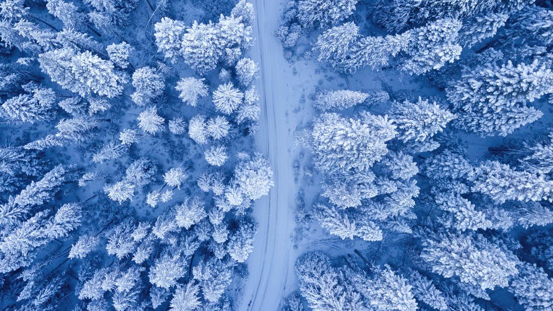 element water verbonden met het seizoen winter