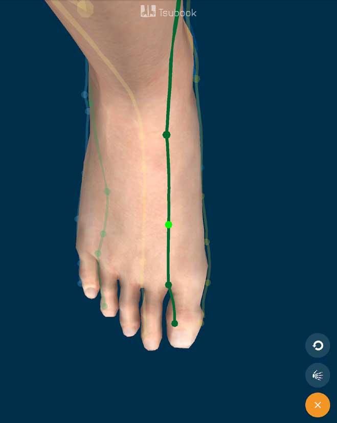 Acupunctuurpunt Lever 3 op de voet