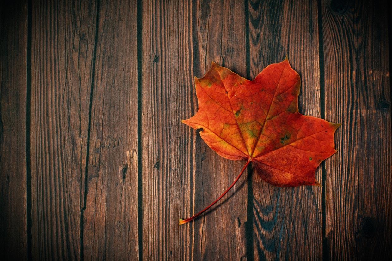 Herfst seizoen van Metaal